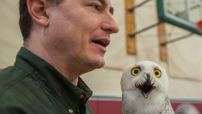 Chris Martello, from the Michigan Hawking Club talks to people with his snowy owl perched on his arm Saturday, February 14, 2015.