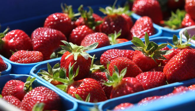 Florida is the largest producer of winter strawberries.