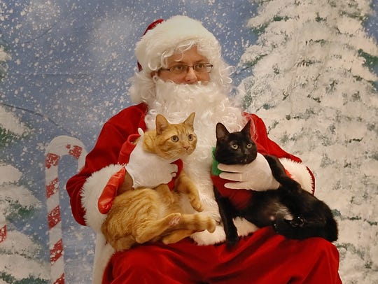 With Jerry Carino filling in as Santa, the cats were