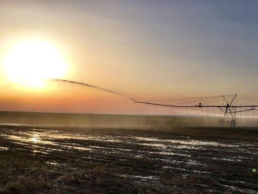 Irrigation near Valier