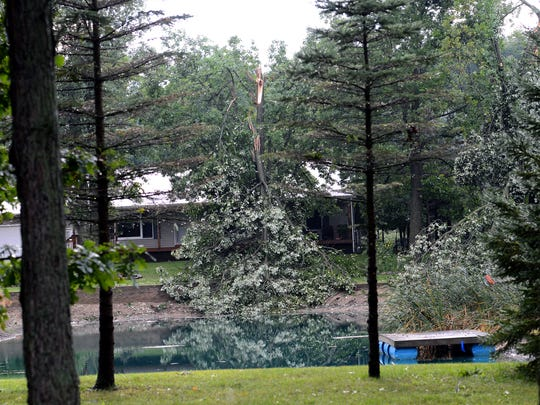 The storm knocked over a large tree into a small pond off Shepper Road in Stockbridge on Wednesday.