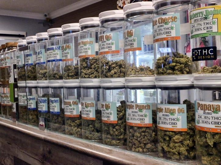 Legalized Pot Medical (2)