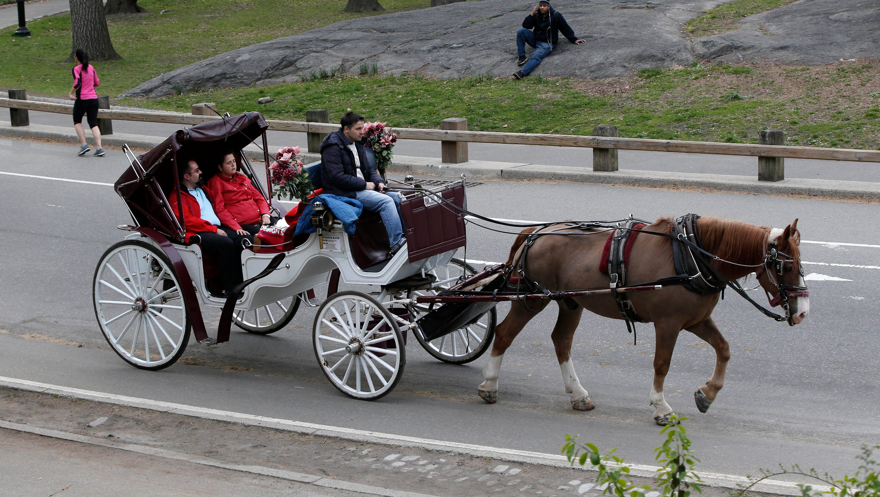 Horse Drawn Carriages Still A Bane For Ny Mayor