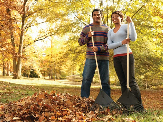 636111807890530395-leaves-cleanup.jpg