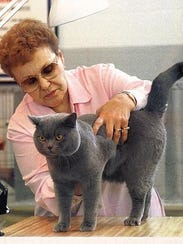 An owner shows her cat.