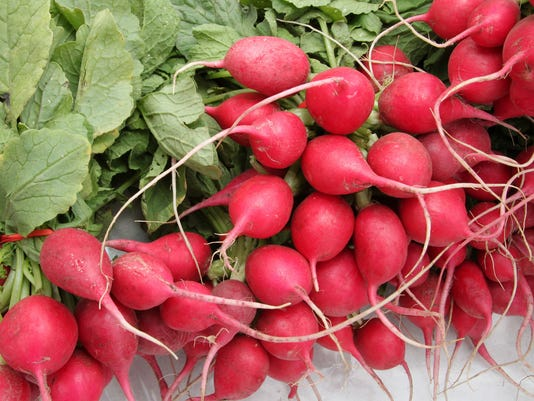 Finish sowing fall radishes