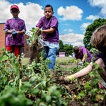 Students at Par Excellence Academy pull weeds from the community gardens at the school during a summer program that teaches kids about gardening.