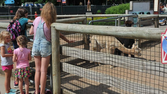 The Great Plains Zoo is inviting the public to help