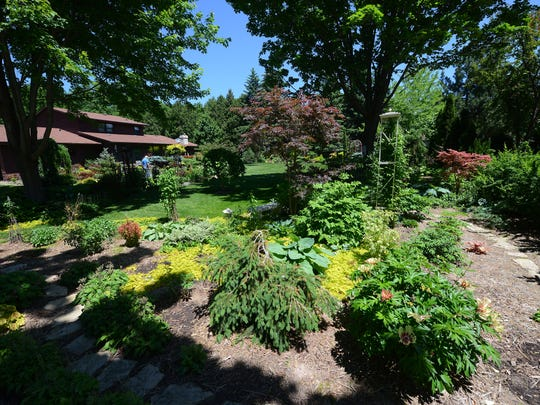 Dwarf conifers, Japanese maples, peonies and perennials intermingle in a backyard that's a mix of sun and shade.