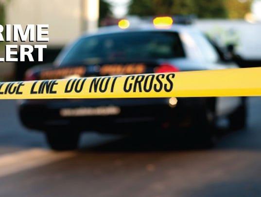 636123442043984308-CRIME-ALERT.jpg