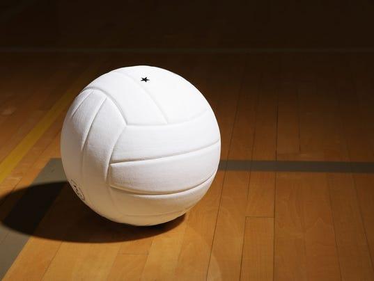 636431369481722529-Volleyball.jpg