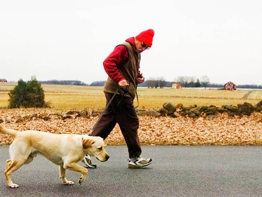Obviously, this is not me. But this dog is beautiful and I can see myself running with him.  DAILY RECORD/SUNDAY NEWS - FILE
