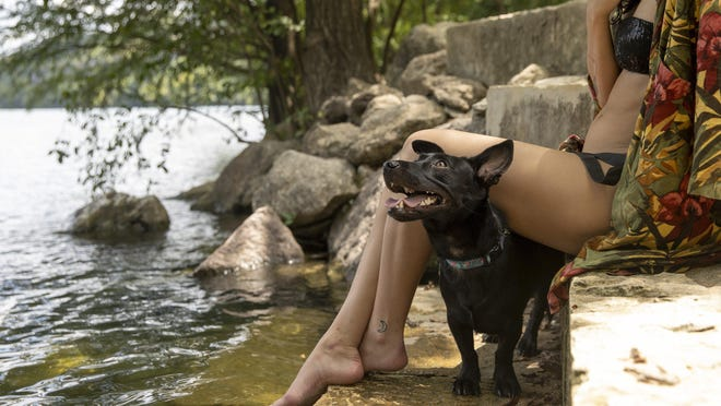 Marie Taylor relaxes at Red Bud Isle with her dog, Bella, on Monday. Harmful blue-green algae blooms that produce toxins have been detected in two spots on Lady Bird Lake: Red Bud Isle near Tom Miller Dam and Festival Beach in East Austin.