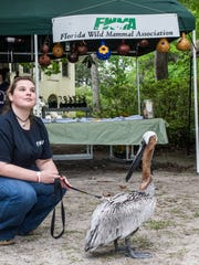 Learn about birds and other wildlife at the Wakulla