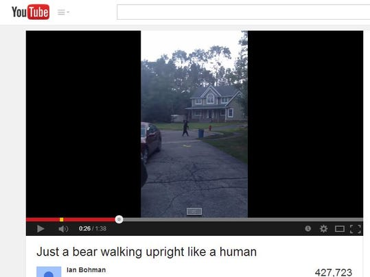 BearWalking-YouTube.JPG