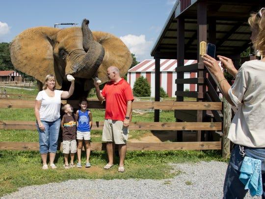 File photo of the Natural Bridge Zoo in Natural Bridge.