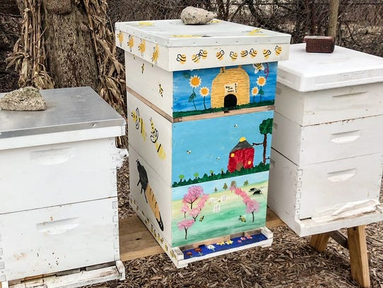 Three bee hives are maintained by Detroit Hives, a nonprofit that plans to have 10 hives up and running this summer and is photographed in Detroit on Tuesday, March 13, 2018.