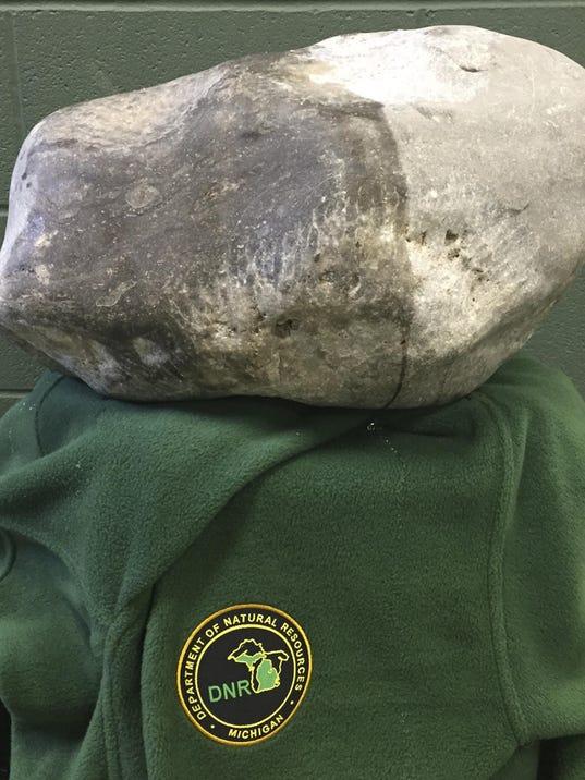 Big Petoskey Stone