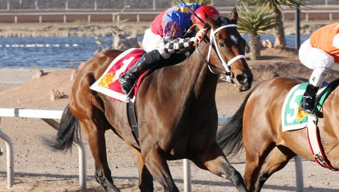 My Bikini Fell Off, shown here on her way to victory in the New Mexico Racing Commission Handicap on December 20 at Sunland Park, is the morning-line favorite in today's Russell and Helen Foutz Distaff Handicap at SunRay Park and Casino in Farmington.