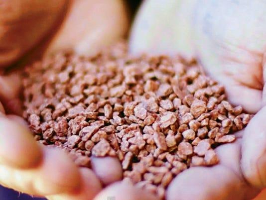 A look at Carlsbad's defining ore: Potash