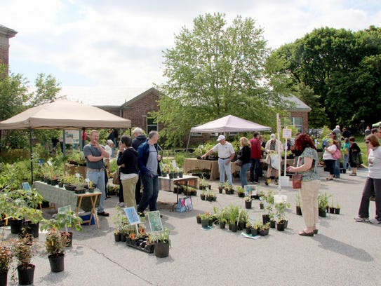The MAEscapes native plant sale offers hard-to-find