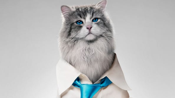 'Nine Lives' is due in theaters Aug. 5.