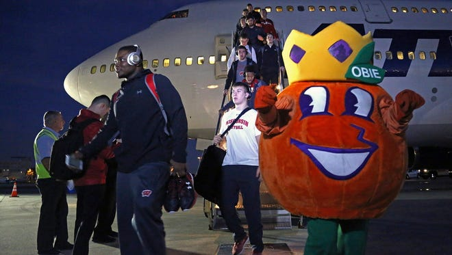 """Obie, the Orange Bowl mascot, welcomes the Badgers has they arrive in Miami on Sunday."