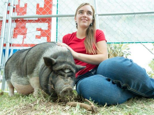 110417 -3- Petting Zoo