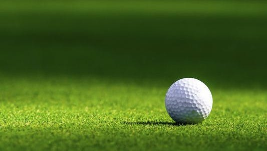 Senior greens fees are set to increase at three of Livonia's public golf courses later this year.