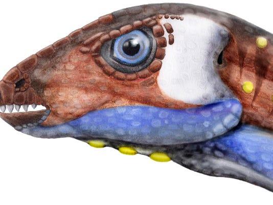-oryctodromeus illustration.jpg_20141218.jpg