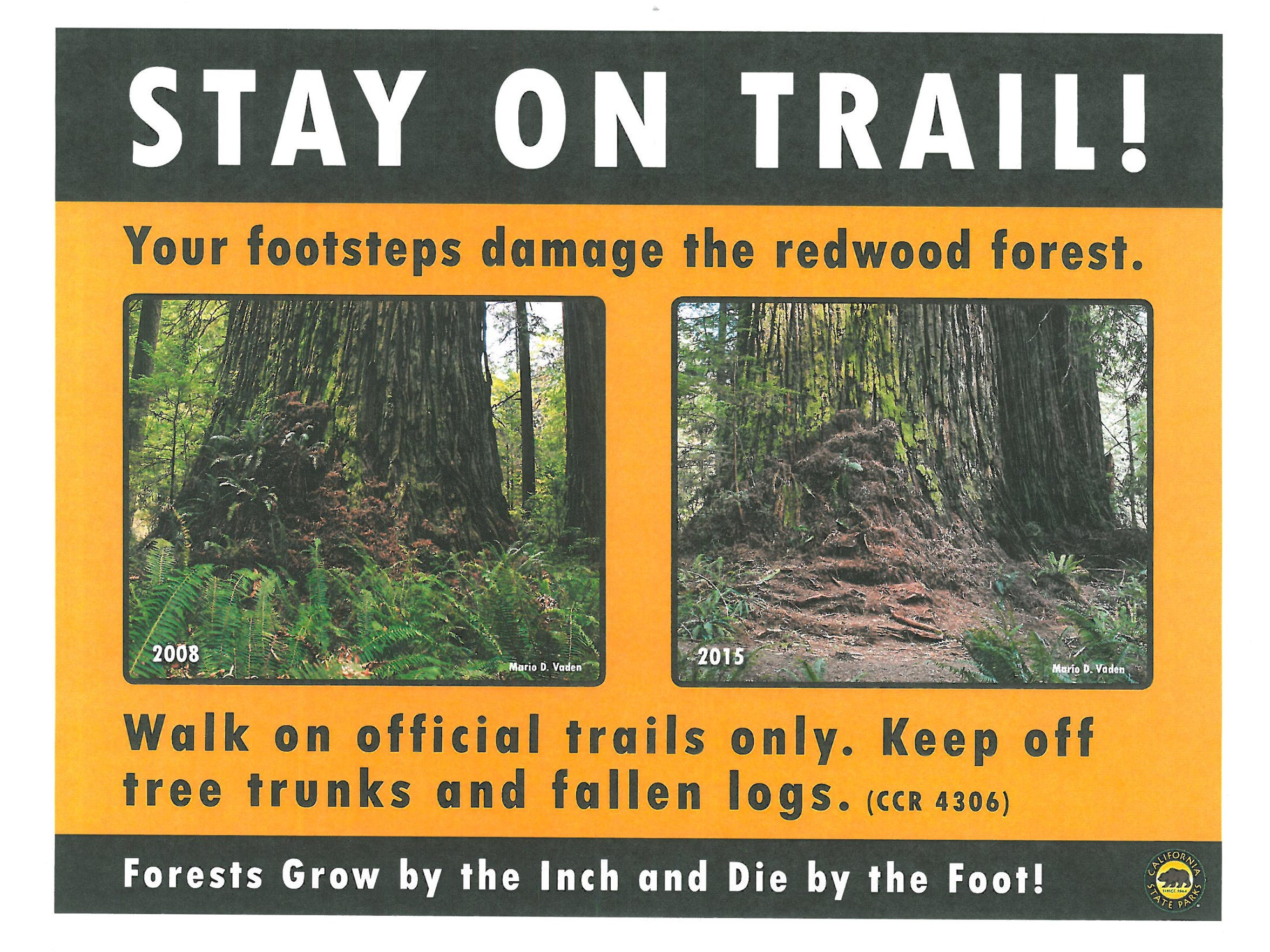 Signs placed last summer designed to keep hikers on established trails and not go searching for the Grove of Titans.