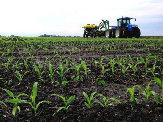 635817201272213639-farm