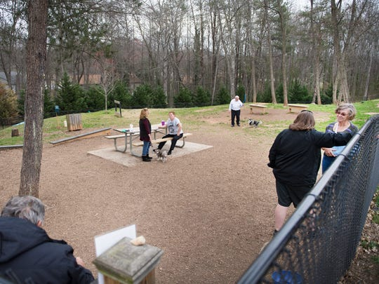 Dogs and their owners play at a dog park near the Pavilion Recreation Complex in Taylors where a cell phone tower has been proposed to be built on Monday, February 27, 2017.