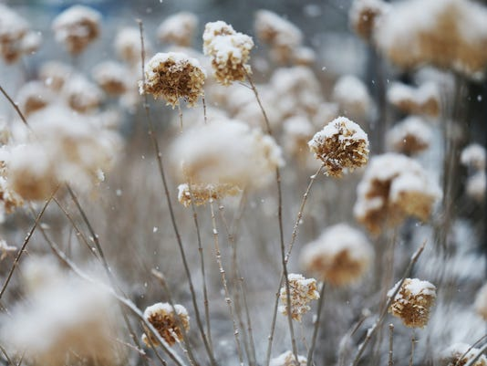 0311 Fair Snow 08.JPG