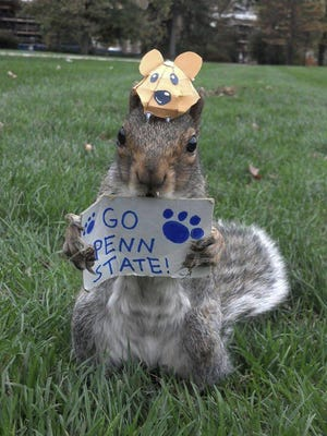 A squirrel that lives on the Penn State campus holds a Go Penn State sign.