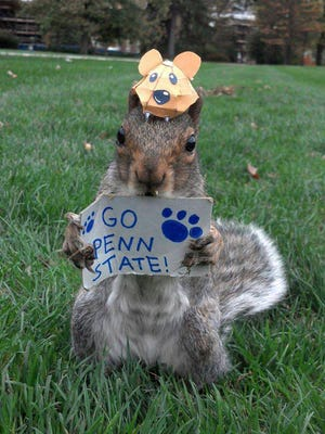 This undated photo shows Sneezy, a squirrel that lives on the Penn State campus, holding a Go Penn State sign. Penn State senior Mary Krupa, better known as the Squirrel Whisperer or Squirrel Girl, is skilled at putting tiny hats on squirrels, and getting them to hold miniature props.