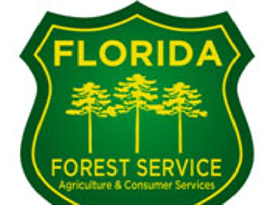 NOT FOR PRINT logo government Florida Forest Service