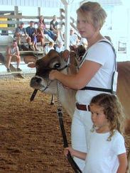 Cow judging was held Thursday morning during the 141st