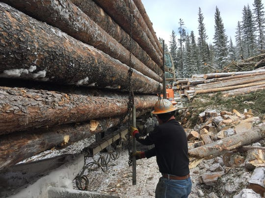 Bob Erlandson, the owner of a log truck, secures his load at the Benchmark logging project.