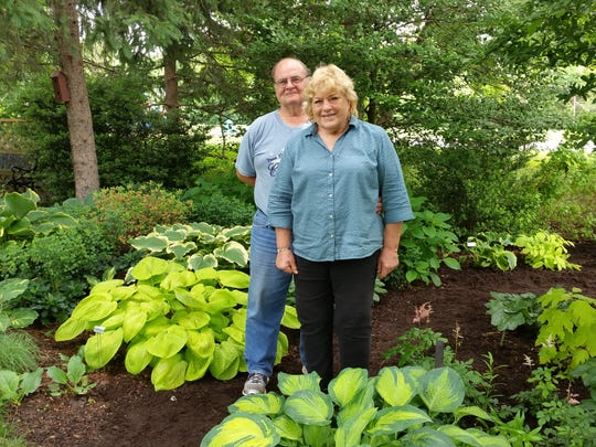 Marilyn and Dan Romenesko in their Wilmington hosta garden.