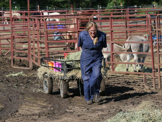 Dee Dee Golberg pulls a cart with feed and hay to feed