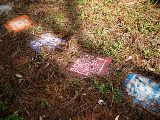 Pine needles and debris now cover a walkway of rainbow-colored
