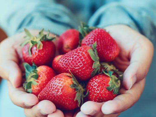 holding fresh strawberry