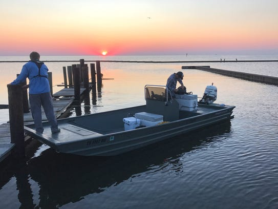 Bays & Estuaries biologists have been focusing on restoring