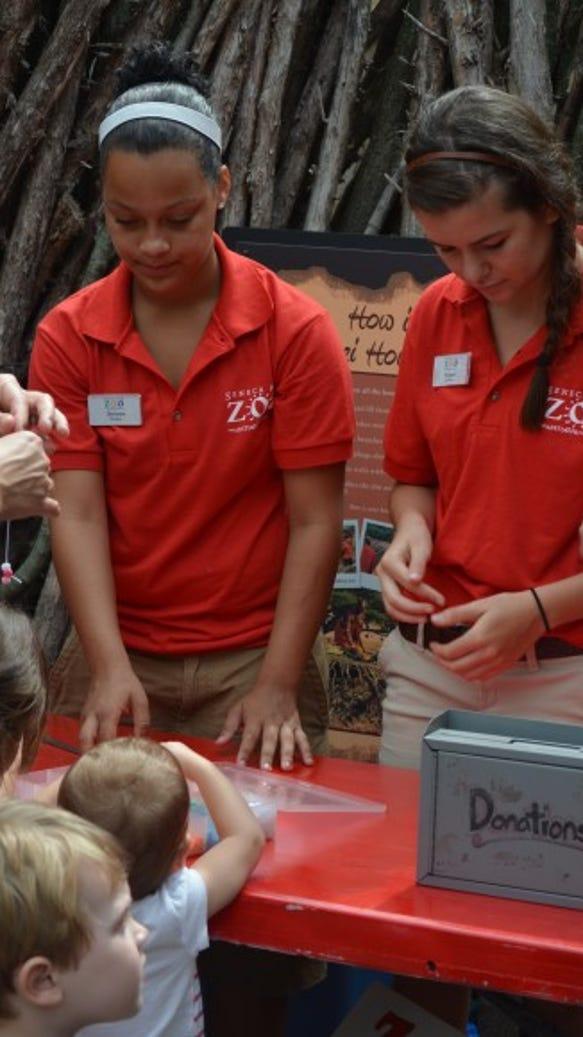 zoo DSC_1808-384x580