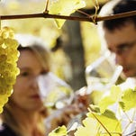 Vote for your wine country favorites.