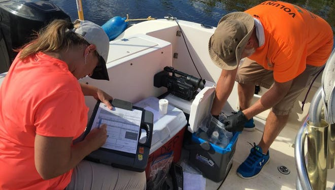 Those working on Port St. Lucie's microbial tracking study take water samples for testing out of the North Fork of the St. Lucie River.