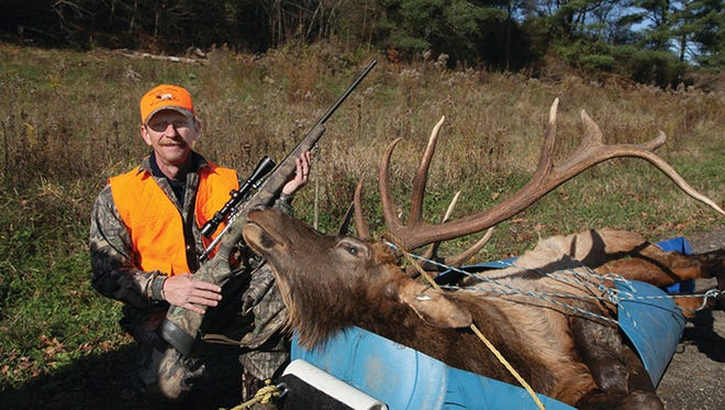 In the Pennsylvania elk harvest harvest  Charles Stone, of Montrose, is pictured beside the 6- by 6-point bull elk he harvested on the first day of the season, Nov. 2.