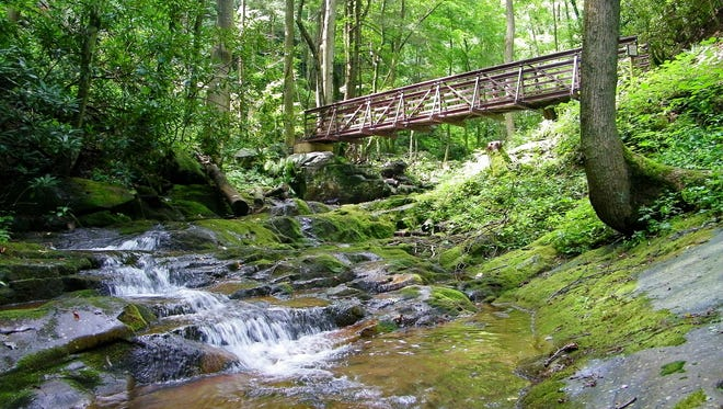 The hike to Margarette Falls is a popular trek in the Cherokee National Forest.