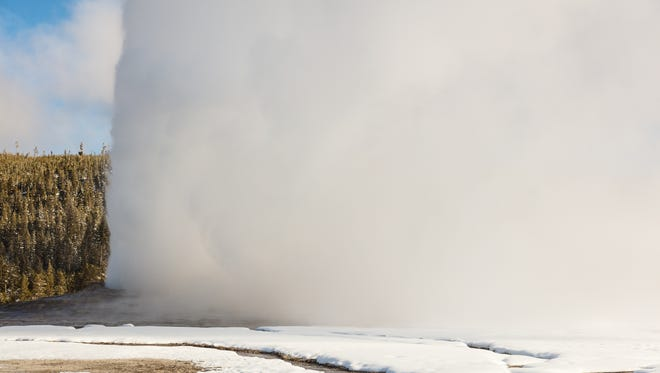 Old Faithful steam curtain in Yellowstone National Park.